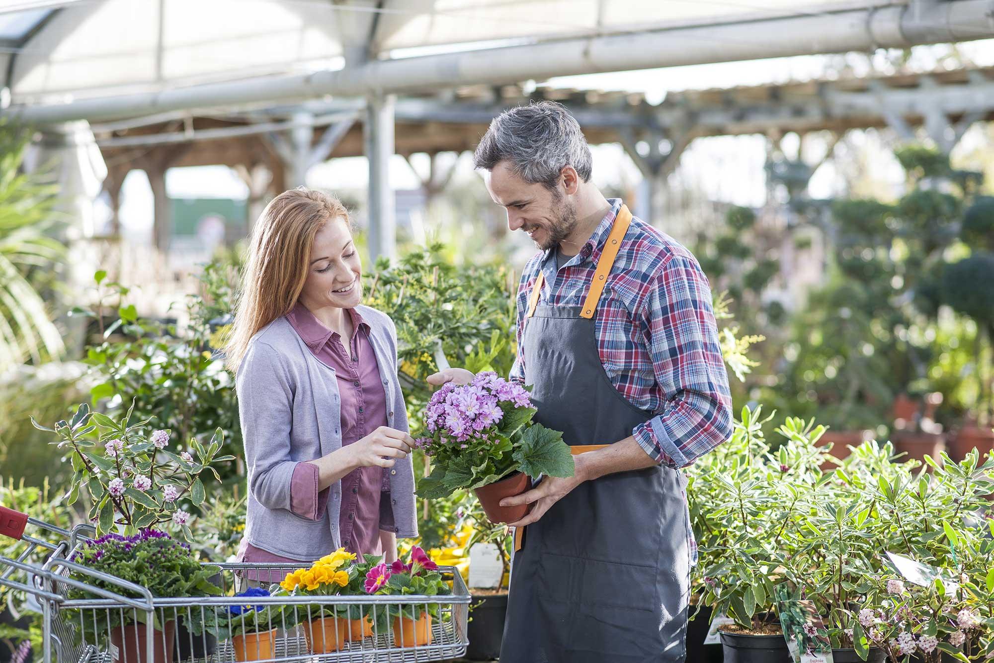 formation-vendeur-conseil-fleurs-et-plantes