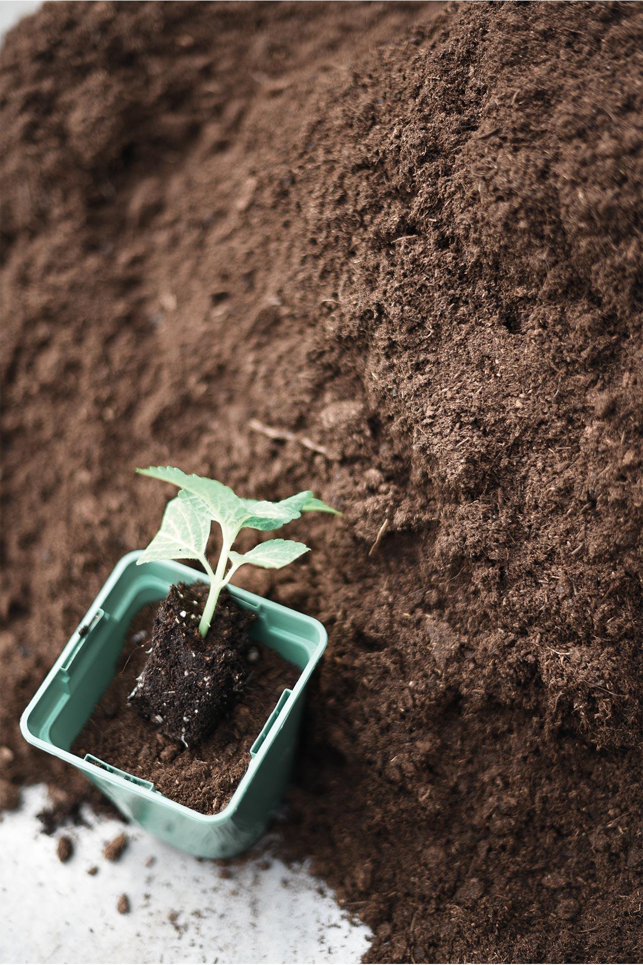 CNPH-Piverdière-formation-végétal-horticulture