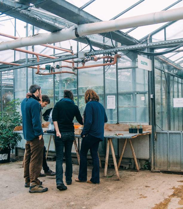 Formation-cnph-piverdiere-ouvrier-de-production-horticole(49)-apprentissage