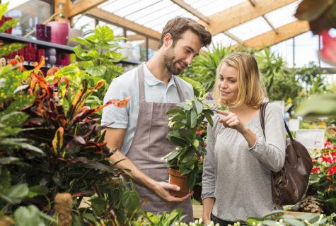 Blog_Vendeur-en-jardinerie-formation-cnph-piverdiere