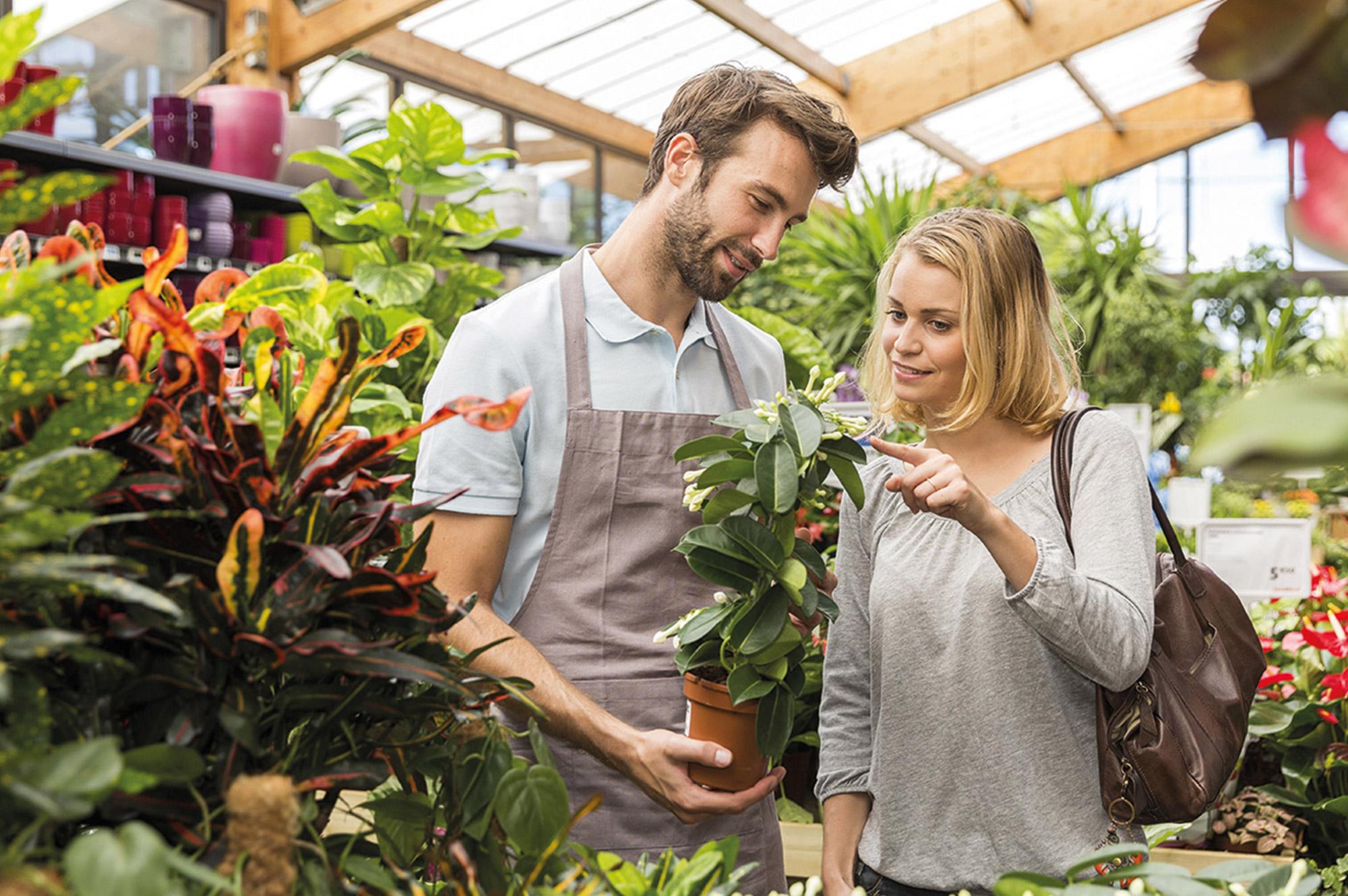 Devenir-vendeur-en-jardinerie-angers-49