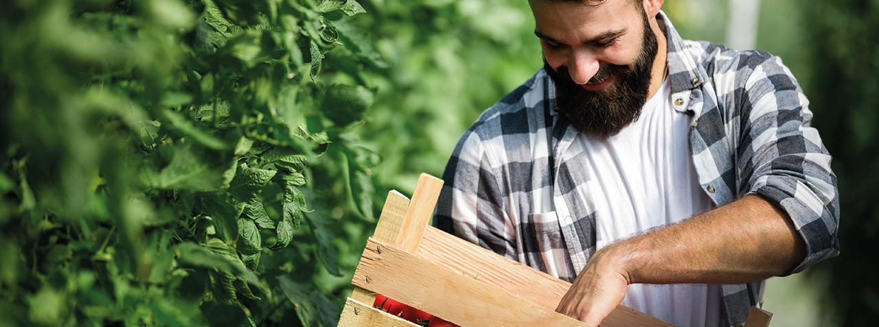 agriculture-biologique-formation-pays-de-la-loire