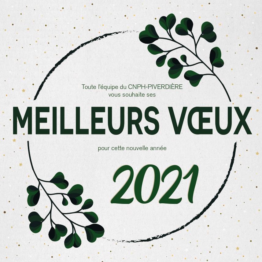 CARTE DE VOEUX 2021 CNPH PIVERDIERE_page-0001