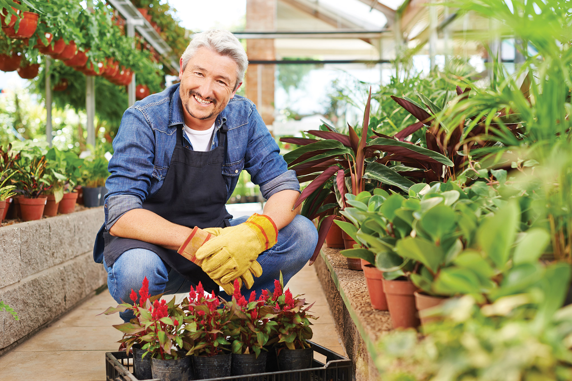 Devenir-horticulteur-formation-reconversion