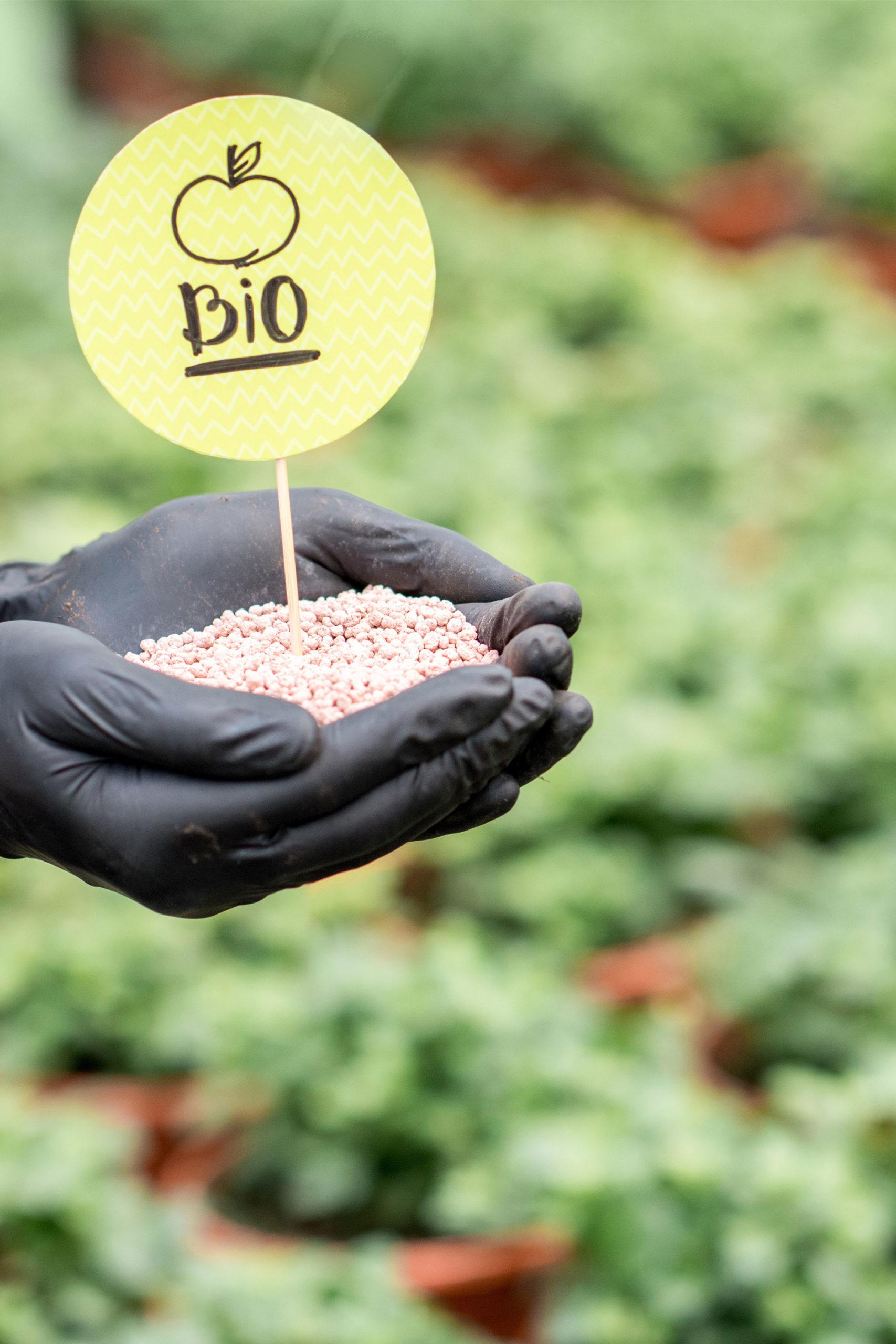 formation-agriculture-biologique-maine-et-loire