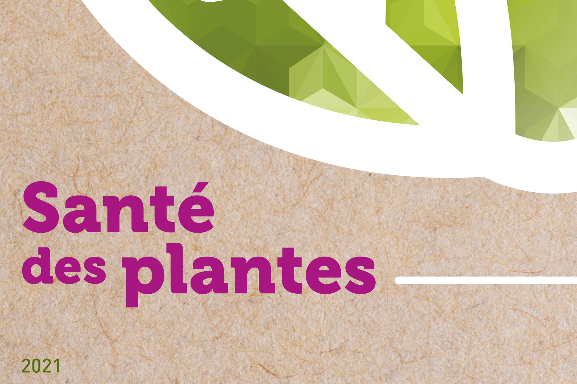 Sante-des-plantes-sival-2021-cnph-piverdiere