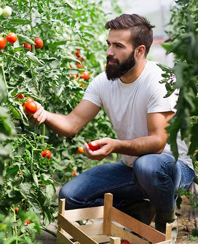 se-former-en-agriculture-biologique