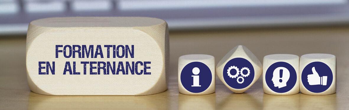Les-différences-entre-contrat-d'apprentissage-et-contrat-pro
