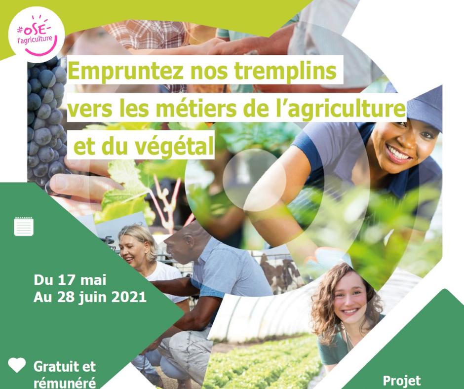 tremplin vers l'agriculture 2021 cnph piverdiere